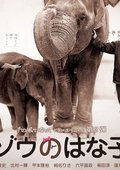 大象花子 海报